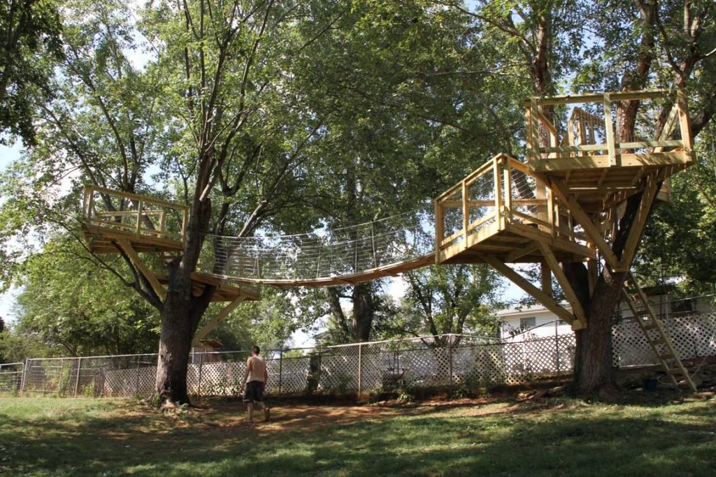 Open platform as tree house