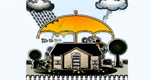 Home maintenance in monsoon